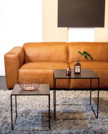 Design-Meubels-Hasselt-Evolution-Havana-sofa-L2
