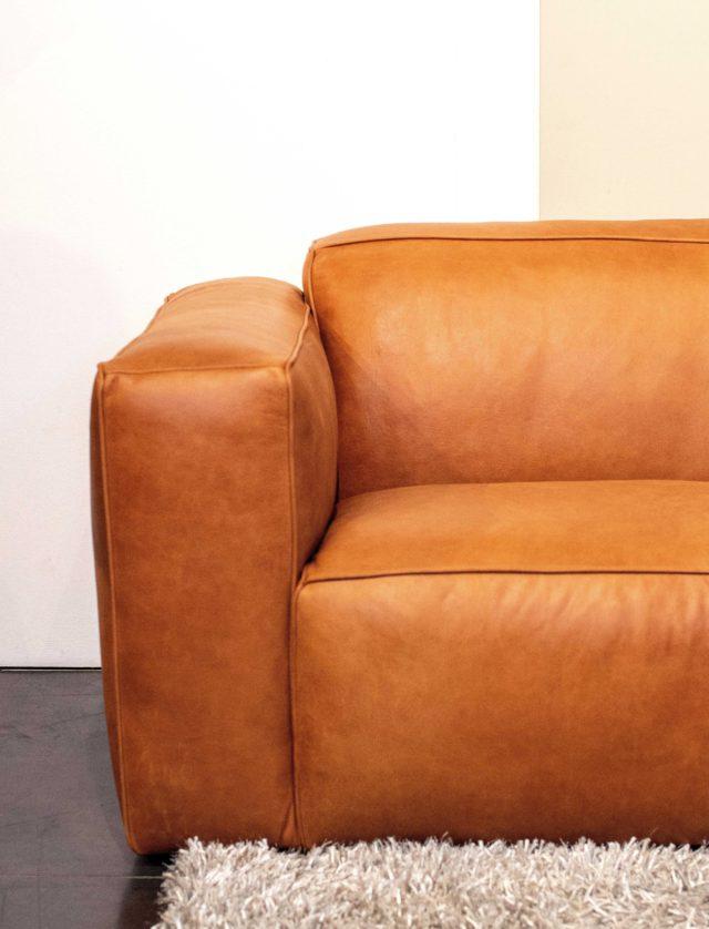 Design-Meubels-Hasselt-Evolution-Havana-sofa-L2-armleuning